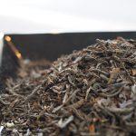 刈捨てられていた良質な2番茶からうまれた茶游堂の「宇治紅茶 芯聖乃香」