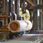 ツキデ工務店の推しは奈良吉野の天然乾燥の杉・桧を使った家作り