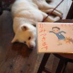 「韓国での写真が僕にとっての原点」BOOKS & FOLKART ナナクモ 森善之さん